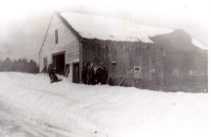 Shackford barn 1945
